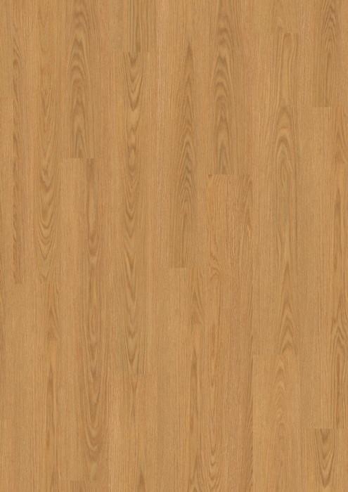 EBL018